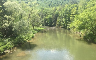 Lance & JD: Rivers, Bugs and Fishing