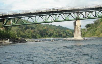 White River Bows