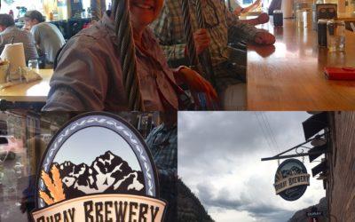 Top 10 Beer-Drinking Establishments