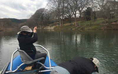 Guadalupe River Update